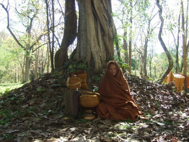 thai forest monk